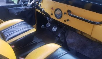 Jipe Willys  1966    6 cilindros full